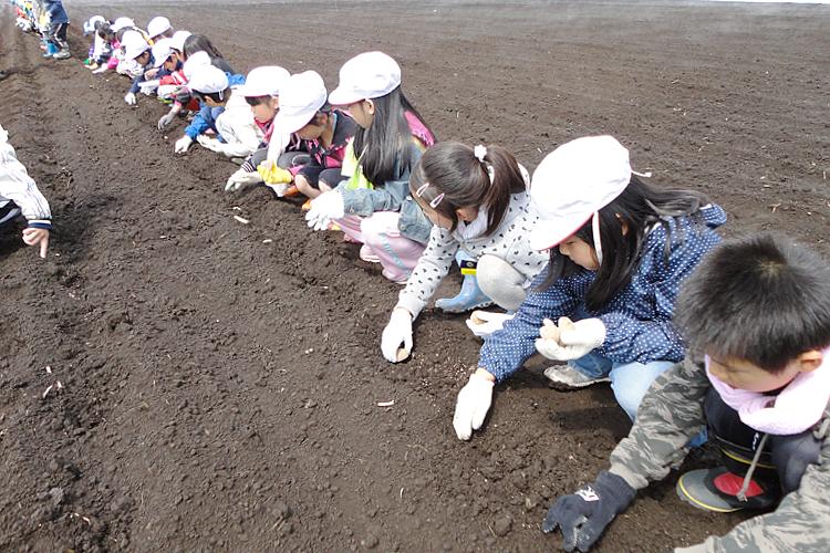 学童農園の様子 1