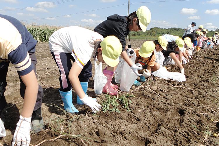 学童農園の様子 2
